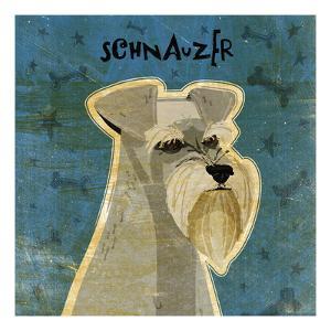 Schnauzer (square) by John W^ Golden