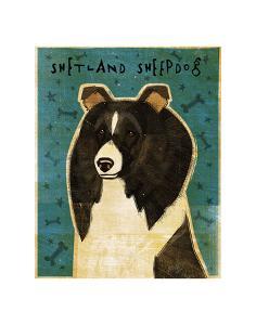 Shetland Sheepdog (Black & White) by John W^ Golden