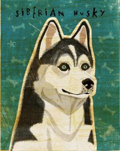 Siberian Husky by John W^ Golden
