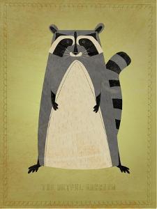 The Artful Raccoon by John W Golden