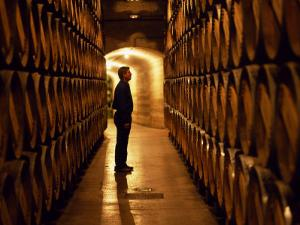 Foreman of Works Inspects Barrels of Rioja Wine in the Underground Cellars at Muga Winery by John Warburton-lee