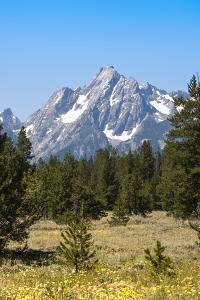 Grand Teton National Park, Teton County, Wyoming, Usa by John Warburton-lee