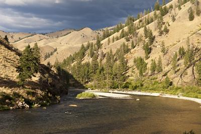 Middle Fork of the Salmon River, Frank Church River of No Return Wilderness, Idaho, Usa