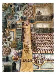The Indian Village of Secoton, Book Illustration, circa 1570-80 by John White