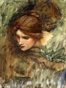 A Study for the Head of Venus by John William Waterhouse