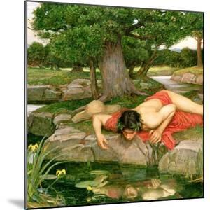 Echo and Narcissus, 1903 (Detail) by John William Waterhouse