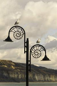 The Famous Ammonite Design Streetlghts in Lyme Regis, Dorset, England, United Kingdom, Europe by John Woodworth