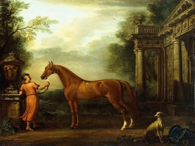 The Chestnut Arabian of Hampton Court, C.1726