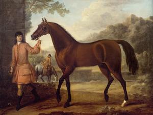The Godolphin Arabian by John Wootton
