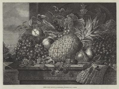 Prize Fruit Grown at Blenheim