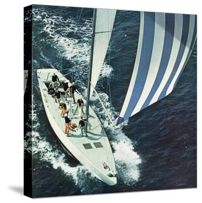 """""""America's Cup,"""" August 22, 1964"""