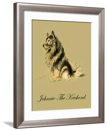 Johnnie The Keeshond-Lucy Dawson-Framed Art Print