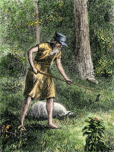 Johnny Appleseed Planting Apple Trees in the Ohio Wilderness--Giclee Print