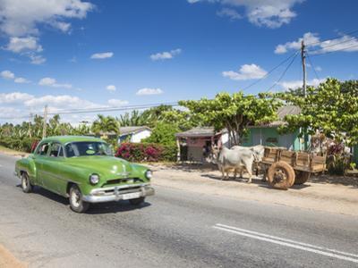 50s American Car Passing Ox and Cart, Pinar Del Rio Province, Cuba