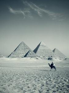 Camel and Giza Pyramids, Giza, Cairo, Egypt by Jon Arnold