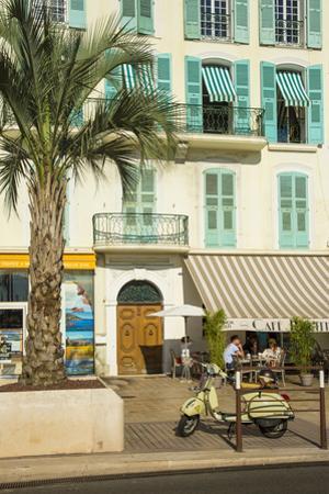 Cannes, Alpes-Maritimes, Provence-Alpes-Cote D'Azur, French Riviera, France