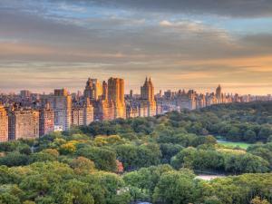 Central Park, Manhattan, New York City, USA by Jon Arnold