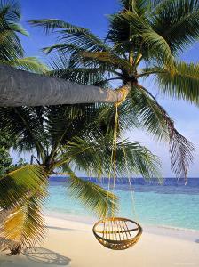 Maldives, Indian Ocean by Jon Arnold