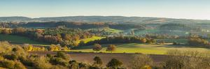 Newlands Corner, Guildford, North Downs, Surrey, England, UK by Jon Arnold