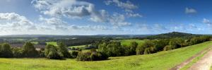 North Downs from Newlands Corner, Nr; Guildford, Surrey, England by Jon Arnold