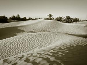 Sahara Desert, Douz,Tunisia by Jon Arnold