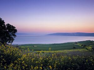 Sea of Galilee, Israel by Jon Arnold