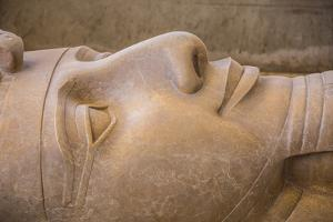 Statue of Ramses II, Memphis (capital of Ancient Egypt), Nr. Cairo, Egypt by Jon Arnold