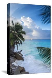Tropical Beach, La Digue, Seychelles by Jon Arnold