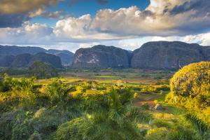 Vinales Valley, Pinar Del Rio Province, Cuba by Jon Arnold