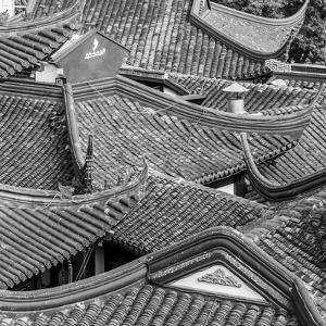 Yuyuan Gardens and Bazaar, Old Town, Shanghai, China by Jon Arnold