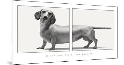 Heads and Tails by Jon Bertelli