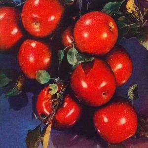 """Ripe Red Apples,""October 1, 1947 by Jon Fujita"