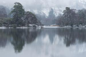 A winter scene at Rydal Water, Lake District National Park, Cumbria, England, United Kingdom, Europ by Jon Gibbs