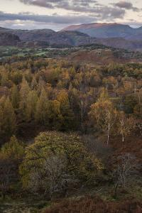 The view at twilight from Holme Fell, Lake District National Park, Cumbria, England, United Kingdom by Jon Gibbs