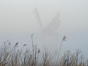Thurne Mill viewed through the mist at Thurne, Norfolk, England, United Kingdom, Europe by Jon Gibbs