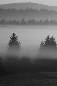 Misty Hills by Jon Hart Gardey