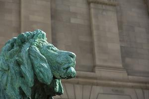 Detail of One of the Art Institute Lions outside the Art Institute of Chicago. by Jon Hicks