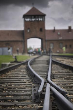 Railroad Tracks Leading into KL Auschwitz II by Jon Hicks