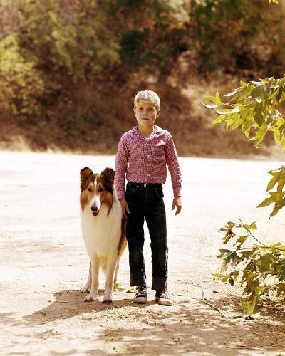 Jon Provost - Lassie--Photo