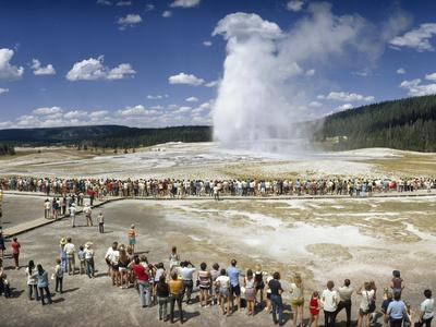 Crowds of Tourists Flock around the Erupting Old Faithful Geyser