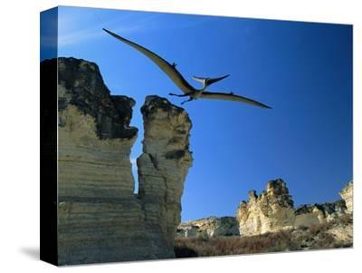 Pteranodon Longiceps in Flight