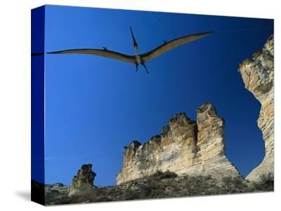 Pteranodon Longiceps Model in Flight