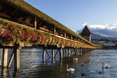 Chapel Bridge, Europe's Oldest Covered and the World's Oldest Truss Bridge by Jonathan Irish