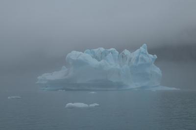 Icebergs in Kenai Fjords National Park. by Jonathan Irish