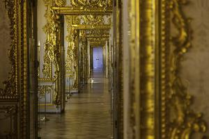 Ornate Gilded Relief Sculpture in the Catherine Palace, Summer Residence of the Russian Tsars by Jonathan Irish
