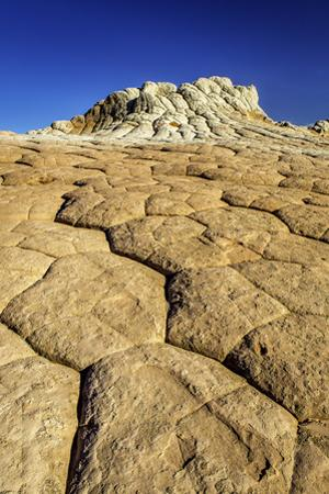 Sandstone Formations in White Pocket, Grand Staircase Escalante National Monument by Jonathan Irish