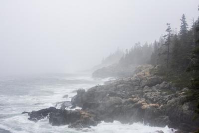 The Atlantic Ocean Crashing on a Foggy, Rocky, Tree-Lined Shore by Jonathan Irish