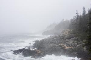 The Atlantic Ocean Crashing on a Foggy, Rocky, Tree-Lined Shore by Jonathan Irish
