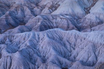 The Blue Mesa region of Petrified Forest National Park. by Jonathan Irish
