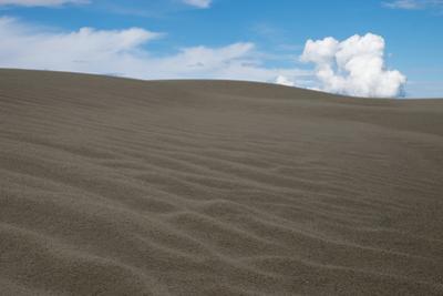 The Kobuk Sand Dunes in Kobuk Valley National Park. by Jonathan Irish